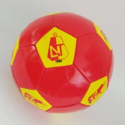 2583719860 w640 h640 2583719860 250x250 - Футбольний м'яч Депортес Толіма