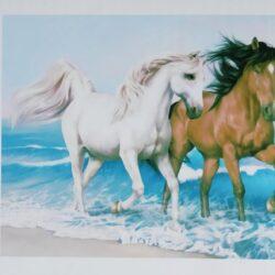"""2895562052 w640 h640 2895562052 250x250 - Картина з страз """"пара втікачів коней"""""""